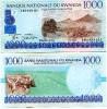 RUANDA - RWANDA:  1000 Francs 1/12/1998  UNC  *P-27  *CATTLE / HARVEST - Ruanda