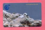 ASCENCION: ASC-M-1C £10 Fairy Tern. 1CASC - Ascension (Insel)