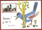 """CPSM 10X15 """" COUCOU, Je Suis à (24) DOUZILLAC """" 805 H. HUMOUR + Mini Vue Place & Eglise - France"""