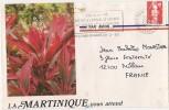 Lettre De La Martinique Cad Fort De France De 1992 - Martinica (1886-1947)
