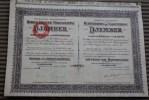 S.A.des Plantations De Caoutchouc DJEMBER Scripophilie-Titre -Action Dont Le Siège Est à La Haye Pays-Bas Nederland 1912 - Landbouw