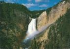 GRAND CANYON - LOWER FALLS.  Yellowstone National Park. - Yellowstone