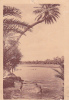 19892 Algerie, Baignade Sans Riviere Du Sud. éd  R Prouho . - Algérie