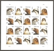 USA. Scott # 4608-12 MNH. Sheet Of 20. Birds Of Prey Hard To Find 2012 - Hojas Completas
