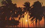 FLORIDA Sunrise - Viaggiata  Timbro Mal Encaminada A Nicaragua - Ohne Zuordnung