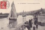 19972 Le Treport (france) Sortie Des Bateaux De Peche . 12 C.A.B.  Voilier Di 404 - Pêche