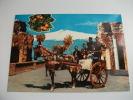 Cavallo Carro Siciliano Costumi Fisarmonica Chitarra - Costumi