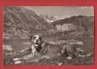 X0193 Chien St-Bernard St-Bernhard Hund, Lac Et Hospice.Non Circulé. Deriaz 10027 - Chiens