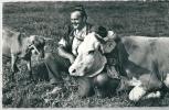 Armailli De La Gruyère, Vache, Chèvre - Elevage