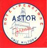 Etiquette Hotel Italie Astor Pensione Firenze Florence Viale Milton 41  Lot 2 étiquettes - Etiketten Van Hotels
