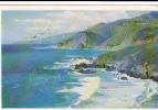 20138 California Coast . N° 9 Morris Taylor. Carmel San
