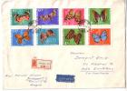 Lettre  Magyar Papillons (4185) Format 22x16 - Ungheria