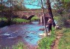 LES BORDS OMBRAGEUX DE RIVIERE - Pêcheur - Fishing