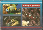 WONDERS OF THE RED SEA Egypt (11,5x 16,5 Cm) - Egypte