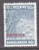 Bangladesh Official 8  (o) - Bangladesh