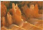 CPM Bryce Canyon, National Park, Utah / Roches Colorées / Pink Cliffs / Curiosité Géologique - Bryce Canyon