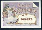 45 - BRIARE  .. ..Carte Souvenir ..... Dessin Fusain ..... Edition Luxe - Briare