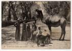 EGYPTIAN TYPES AND SCENES - Famille Arabe - Egitto