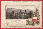 LAUSANNE LITHO, EN RELIEF, 1902 - VD Vaud