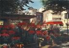 Saint-Etienne - Le Marché Aux Fleurs De La Place Du Peuple, Ref 1202-074 - Saint Etienne