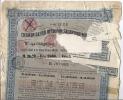 Chemin De Fer Ottoman Salonique-Monastir - 2500 Francs - 2e Choix (voir Scan) - Chemin De Fer & Tramway