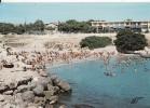 *** 13 - CARRO-PLAGE - Mer Et  Soleil - La Plage Animée *** CPM Voyagée En 1981  Edts LA CIGOGNE - France