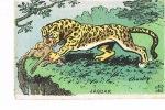 JAGUAR - Imp CH. COURMONT - Cpa Papier Façon Velin - Sans Mention Carte Postale - Rhinocéros