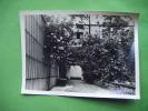 Photo -l´officiers Club De Hambourg-(sous Reserve) Lieu A Identifier- - Photos