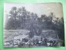 Petites Photos - --- Testour Pont De Medjerda-dougga Le Capitole-oasis De Gabes-en 1928 - Photos