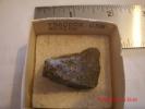 PEACOCK ORE OR BORNITE, MEXICO - Minerals