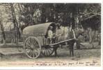 Carte Postale Ancienne Landes - Meunier Et Son Attelage - Mules, Métiers, Farine, Pain - Other Municipalities