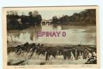 B - 44 - BOUSSAY - La Sevre - Barrage à Dobigeon - éditeur Chapeau - - Boussay