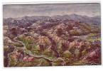 Tolmino Caporetto- Dove Combattono I Ns. Soldati- Nuova - Altre Città
