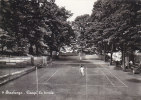 $3- 1837- Sinalunga - Campi Da Tennis - Siena - F.g. - Non Viaggiata - Siena