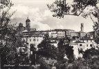 $3-1838- Sinalunga - Panorama - Siena - F.g. Viaggiata - Siena