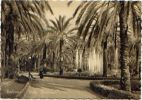PA 600231Palermo – Villa Bonanno - Palermo