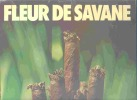 PLV PUBLICITE SUR CARTON FLEUR DE HAVANE CIGARE SEITA - Cigares - Accessoires