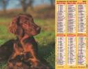 Calendrier Du Facteur 1992 ( Chien Setter Irlandais ) - Calendriers