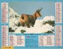 Calendrier Du Facteur 1993 ( Isard ) - Calendriers