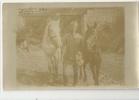 MILITARIA - GUERRE 1914-18- CARTE PHOTO FRONT D'ORIENT -  1918 - BOUCLE DE LA CERNA - TCHERNA - MILITAIRE ET CHEVAUX - Guerra 1914-18
