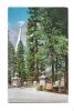 Cp, Etats-Unis, Yosemite National Park, Yosemite Falls From Sentinel Bridge, Voyagée 1958 - Yosemite