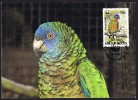 1987  WWF Parakeet On FDC Maxicard - St.Lucia (1979-...)