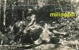 Malaisie - Timbre Oblitéré SINGAPORE 1936 - Chasse Au Buffle  - Photo GEVAERT         (1902) - Malaysia