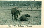 CHROMO OFFERTE PAR CARRIERE ET RENARD..ROUEN....BUFFLES DU TCHAD  (AFRIQUE) - Trade Cards