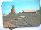 Australië Australia QLD Sunshine Plantation Near Nambour - Australia