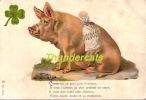 CPA CARTE LITHO COCHON  ** VINTAGE LITHO CARD PIG - Cochons