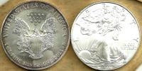 USA UNITED STATES 1 DOLLAR EAGLE EMBLEM FRONT WALKING LIBERTY BACK 2010 AG1 Oz SILVER KM? READ DESCRIPTION CAREFULLY !!! - Emissioni Federali