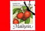 MALESIA - MALAYSIA - Usato - 2002 - Frutti Tropicali - Nephelium Lappaceum - 40 - Malesia (1964-...)