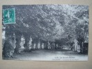 52. CHAUMONT - L'avenue De Saint Roch - Chaumont