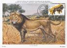 D05866 CARTE MAXIMUM CARD FD 2011 NETHERLANDS - LION CP MUSEE ORIGINAL - Big Cats (cats Of Prey)